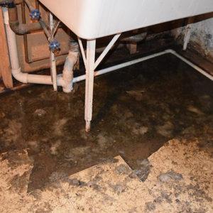 sewage backup albany