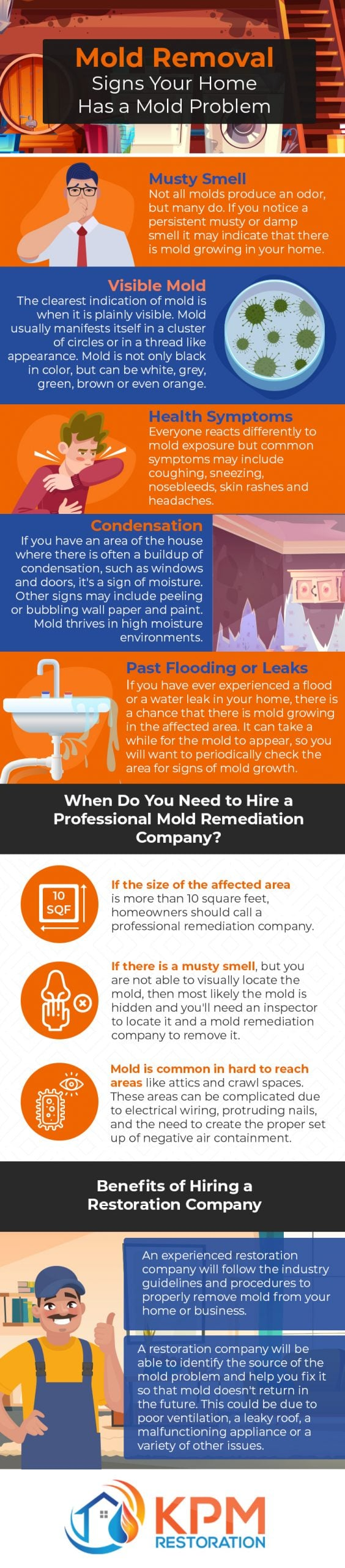 Mold Removal NY